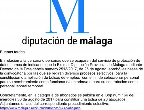 La Asociación impugna la designación de DPD de la Diputación de Málaga para los ayuntamientos